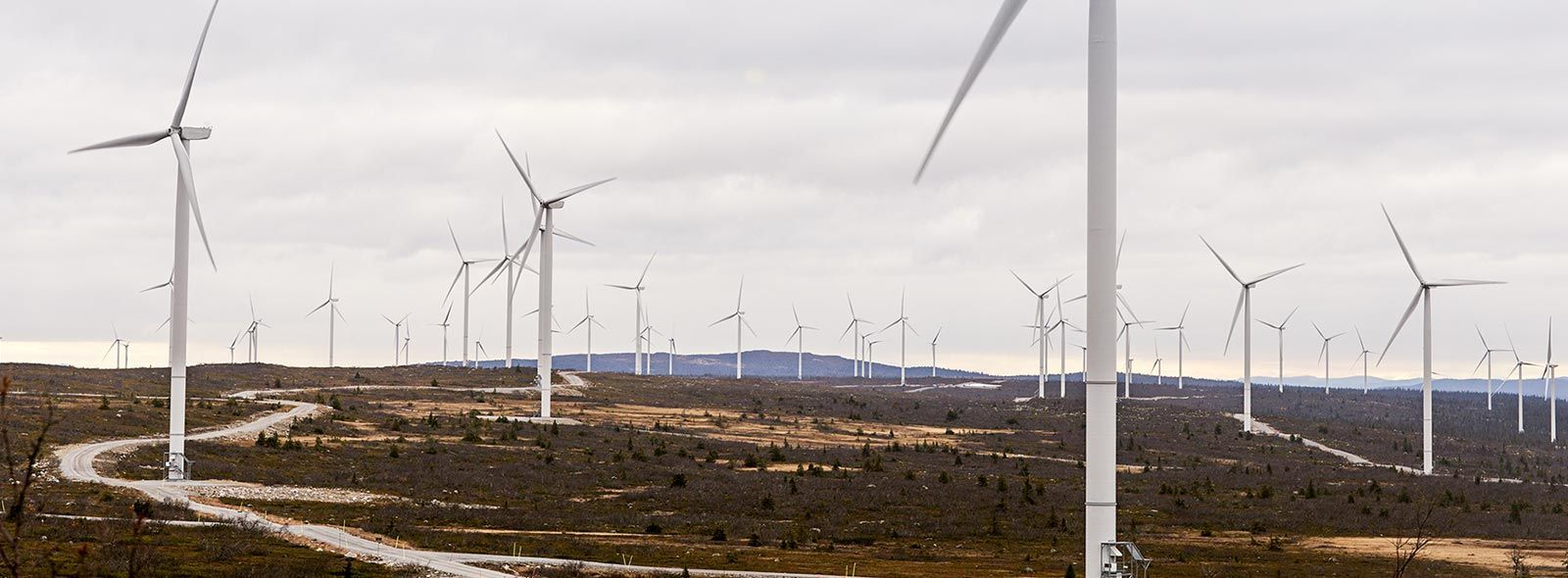 Blaiken_vindkraftpark