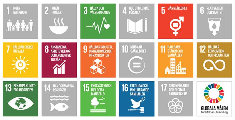 Översikt över de 17 globala målen.