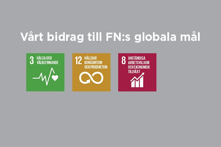 Vårt bidrag till FN:s globala mål: Mål 3,12 och 8