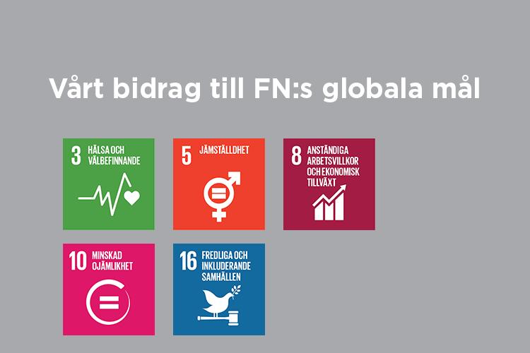 Vårt bidrag till FN:s globala mål: Mål 3,5,8,10 och 16
