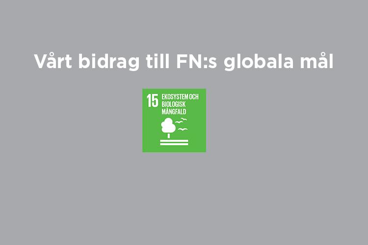 Vårt bidrag till FN:s globala mål: Mål 15