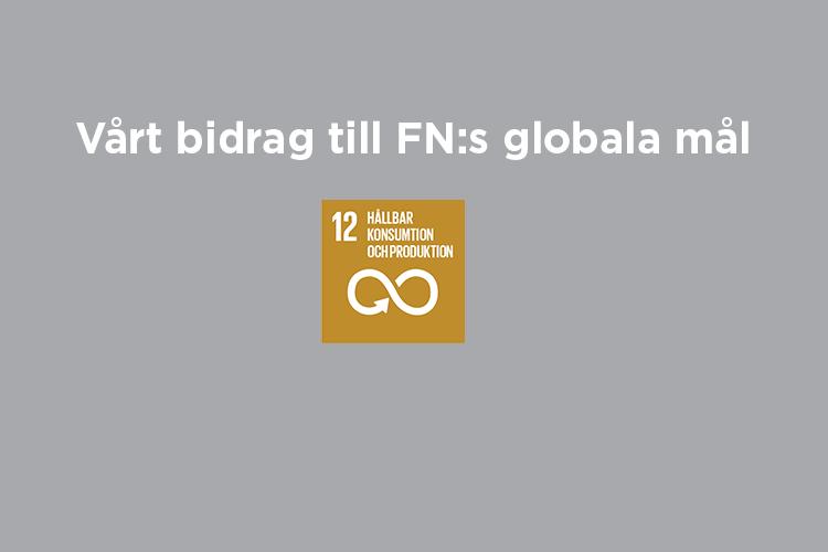 Vårt bidrag till FN:s globala mål: Mål 12
