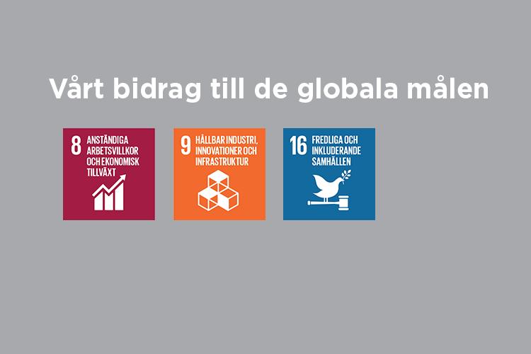 De globala målen 8, 9 och 16